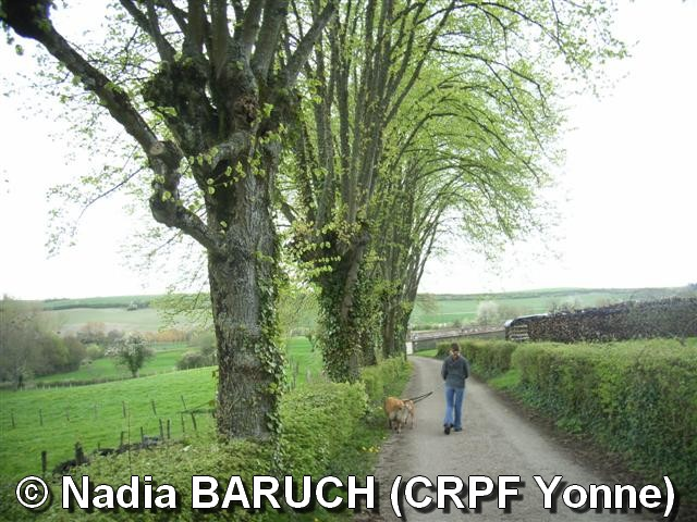 NadiaBARUCH(CRPFYonne)-photo4.jpg